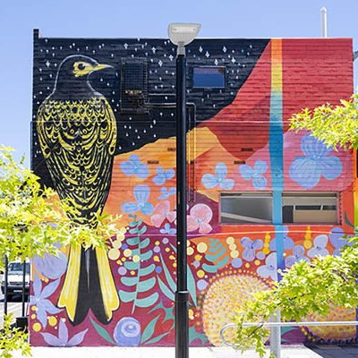 Scullin shops mural.  Photo: Jamila Toderas